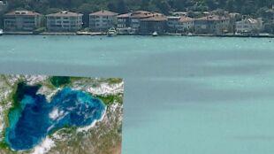 Woda w morzu zmieniła kolor